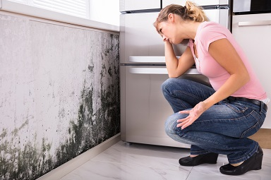 Shocked Woman Looking At Mold On Wall